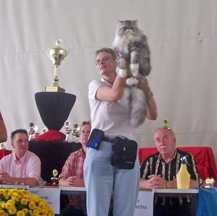 Show Werth, 17-09-2006: Kitty Best In Variateit, Best In Show, Best of Best en Nominatie Best over All!