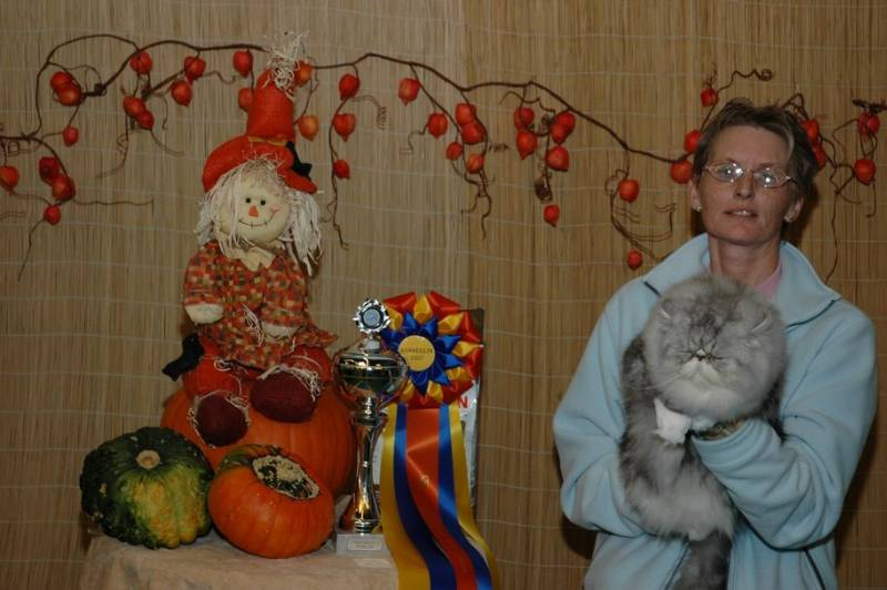 21-10-2007, Gorredijk: Kitty Best in Show