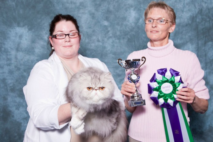 2010, Show Gorredijk: Kitty Best in Show
